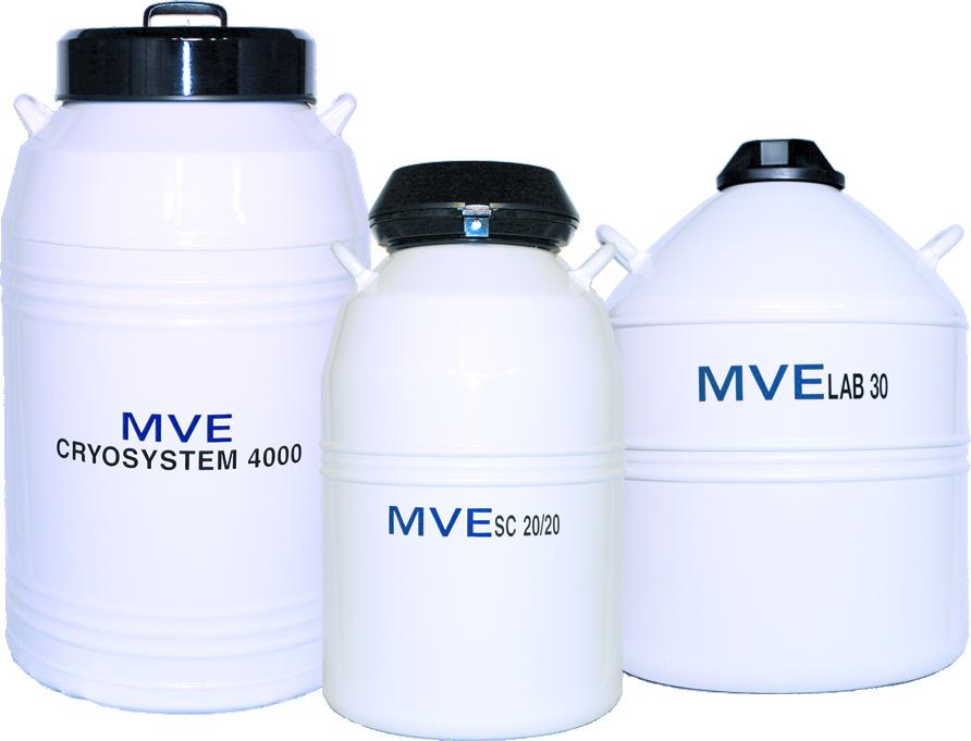 MVE XC 20 Millennium