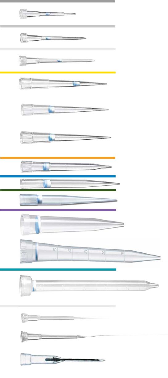Varfuri Speciale electroforeza  volum 0.5-20  μL ,62 / 100 mm-culoare gri deschis
