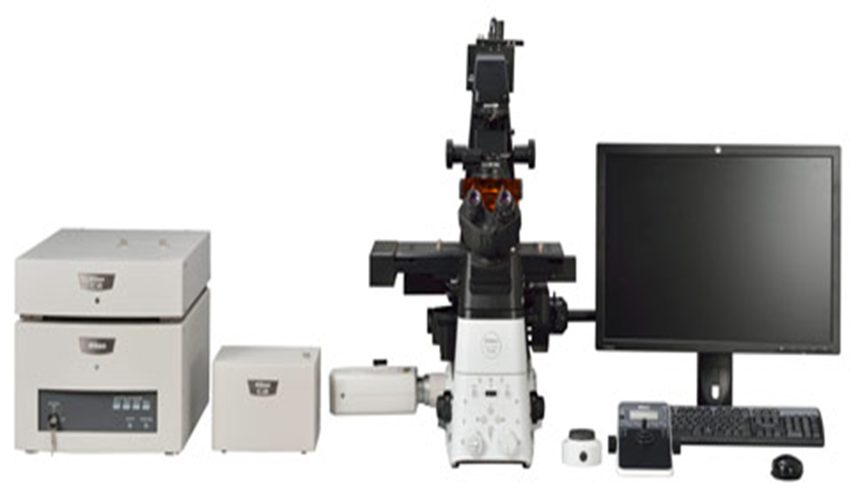 Microscop C2+