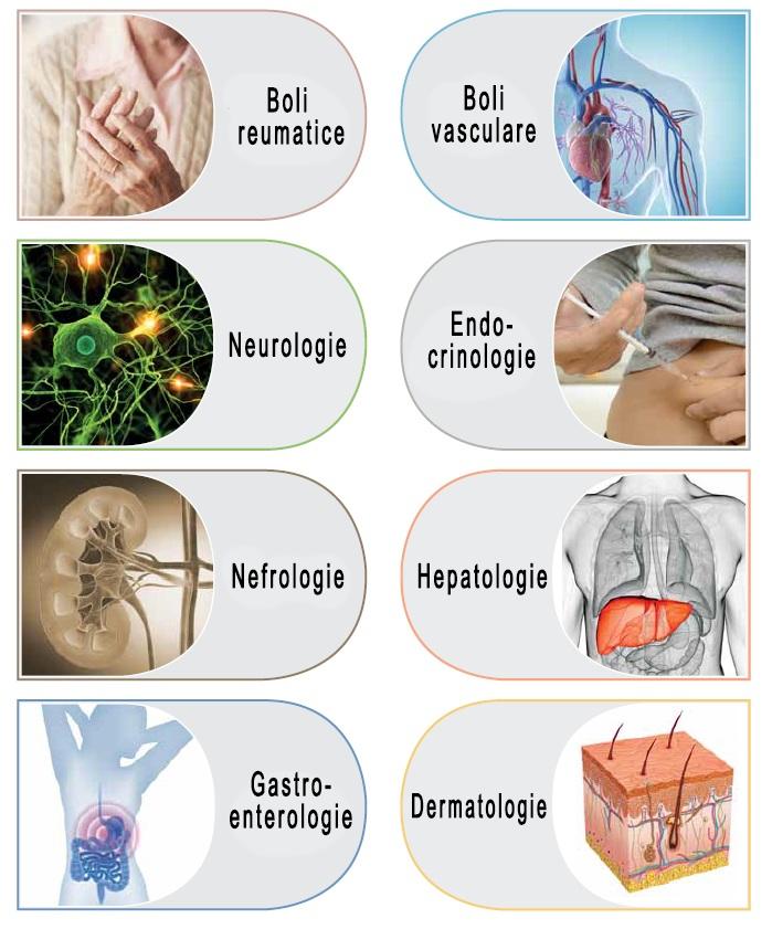 Imunoblot - Boli autoimune