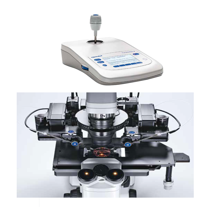 Micromanipulator TransferMan® 4r/m