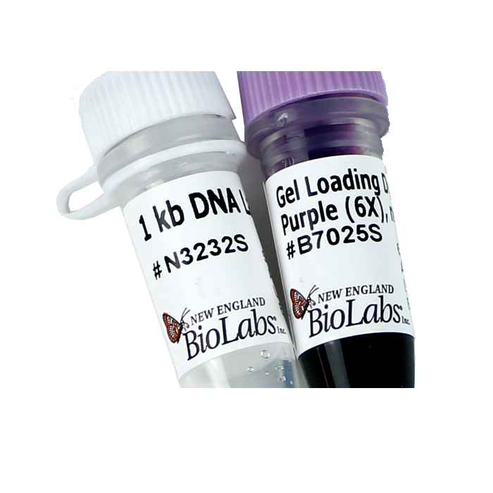 Marker de greutate ADN 1 kb DNA Ladder