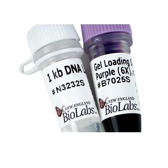 Marker de greutate ADN 1 kb DNA Ladder