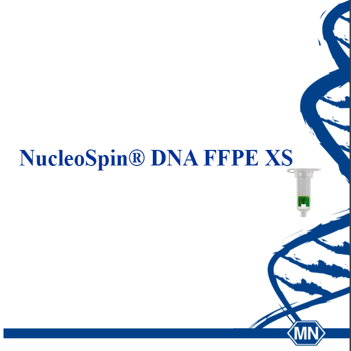 Kit extractie  AND -din probe imparafinate NucleoSpin® DNA FFPE XS